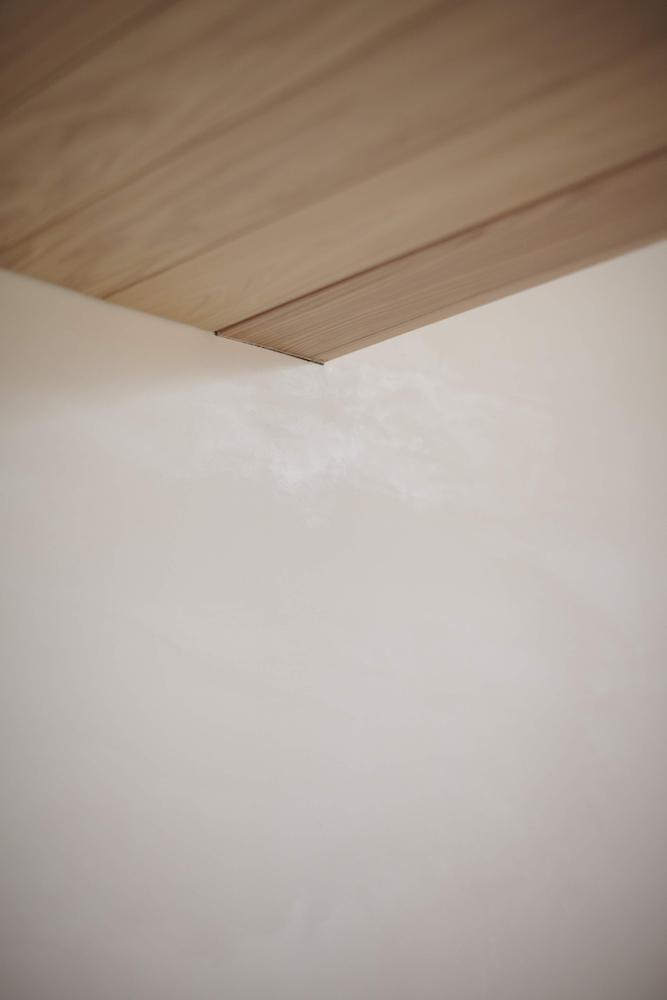 天井板張り+漆喰の壁